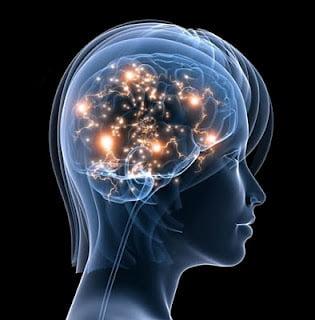 Neuroliderazgo_una perspectiva revolucionaria del liderazgo